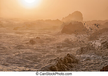 Spume in the setting sun