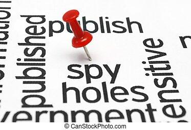 Spy concept