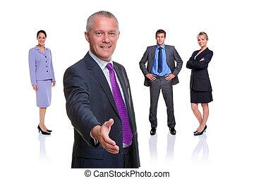 squadra affari, stretta di mano, isolato