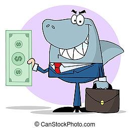 squalo, affari, presa a terra, contanti