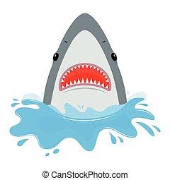 squalo, con, aperto, mouth.
