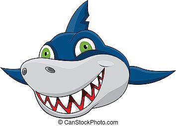 squalo, faccia