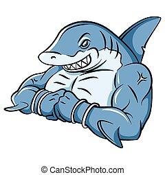 squalo, forte, mascotte