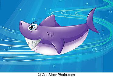 squalo, mare profondo