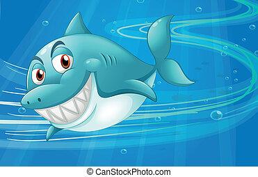 squalo, mare, sotto