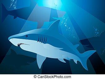 squalo, nuoto, mare, luce sole, sotto