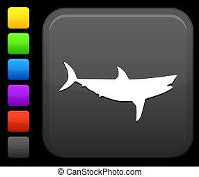 squalo, quadrato, bottone, icona, internet