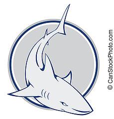 squalo, simbolo