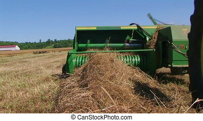 Square Baling Hay - Square baling hay with accumulator,...