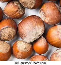 square food background - whole hazelnuts close up