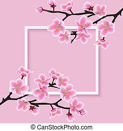 Square frame with a sakura or cherry blossom vector illustration on a pink.