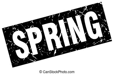 square grunge black spring stamp