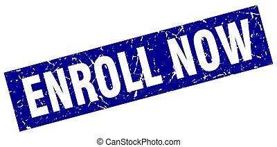square grunge blue enroll now stamp