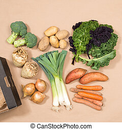 Square Image of Assorted Vegetables and a Cardboard Box