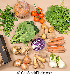 Square Image of Collection of Fresh Vegetables and a Box