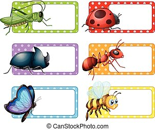 Square labels and many insects illustration