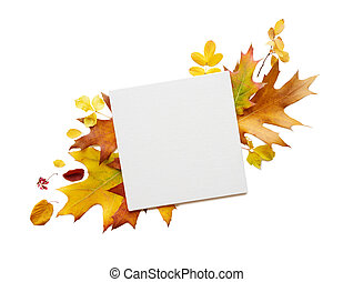 Square paper sheet and multicolored fallen leaves
