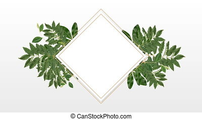 photo frame for copy space with decorative plant - square ...