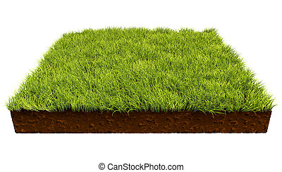 Square piece of land with green grass isolated on white background.