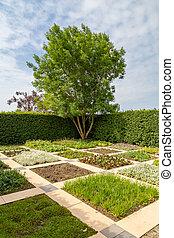 Square plant box design