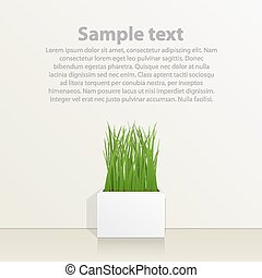 Square pot with grass against the wall