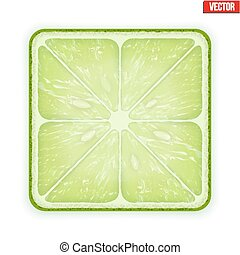 Square slice of lime. Isolated on white background. Vector Illustration.
