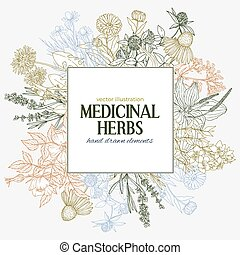 Square text field with hand-drawn colored medicinal herbs...