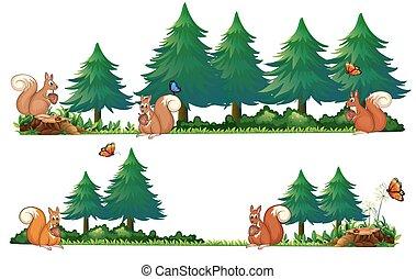 Squarrels in the field