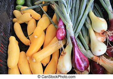 Squash and onions