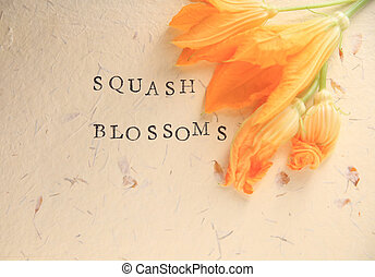 Squash blossoms with words