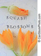 Squash flowers with words vertical