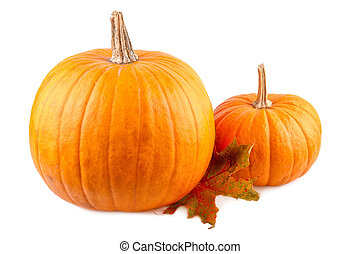 Squash with fall leaves on white. Orange pumpkins isolated on white background