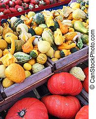 squashes, markt, kleurrijke, variëteit
