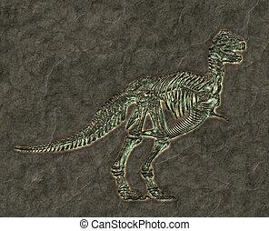 squelette, t-rex
