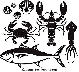 squid., fish, silhouette, coquillage, fruits mer, crevette rose, vecteur, homard, crabe thon, set., illustrations.