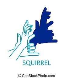 squirrel., burattino ombra, mano