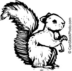 Squirrel - A forest squirrel done in woodcut style sits and...