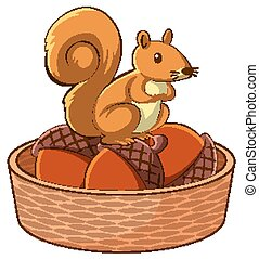 Squirrel in basket on white background