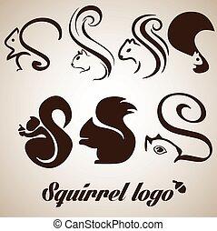 squirrel logo collection - squirrel logo concept designed in...