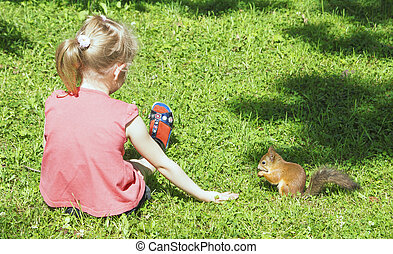 Squirrel nibbles Nut, sitting next to a girl with outstretched hand, girl sitting, his legs stretched out on the grass, view from the back