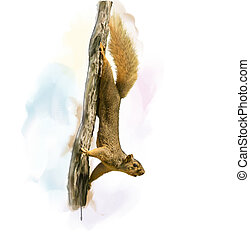 Squirrel On A Tree watercolor