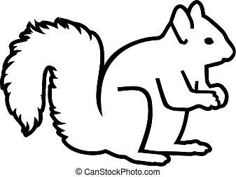 Squirrel realistic contour