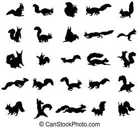 Squirrel silhouettes set
