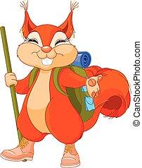 Squirrel traveler - Illustration of cute squirrel walks to ...