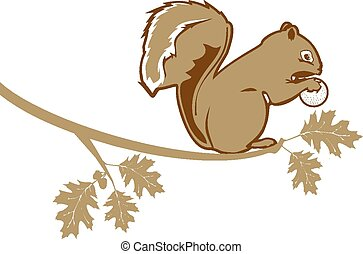 Squirrel  - Illustration of a squirrel