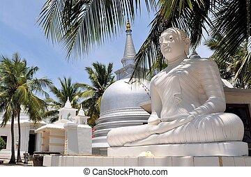 sri, árboles, palma, stupa, debajo, lanka, budista