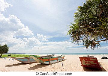 sri lanka, -, ahungalla, -, traditionelle , longboats, strand
