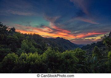 Sri Lanka Ella landscape at sunrise, colorful sky. Tropical vacation in mountains