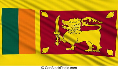 Sri Lanka Flag, with real structure of a fabric