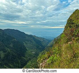 Sri Lanka – landscape cloud forest of the Horton Plains...